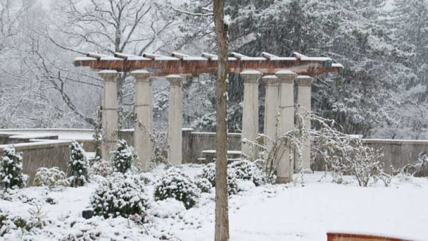 pergola covered in snow