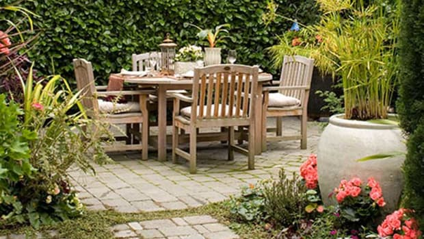 A flagstone patio with garden edging