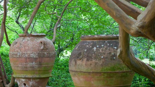 two giant wine and olive jars, Grecian garden