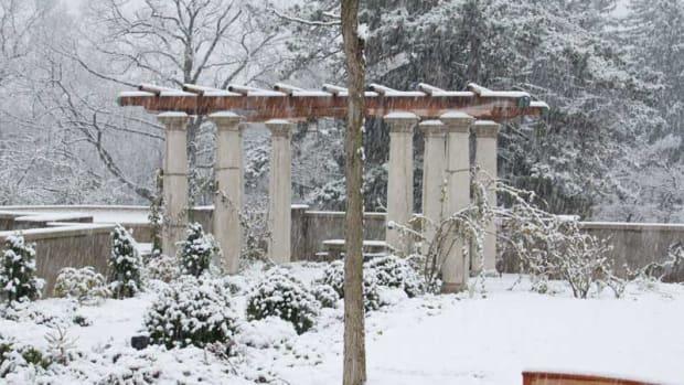 pergola covered in snow