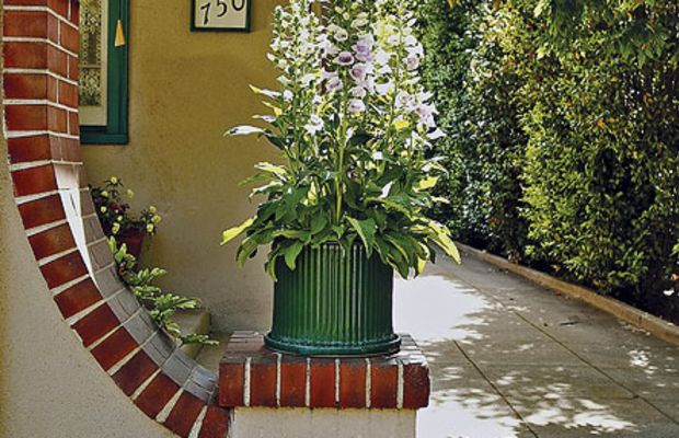 """The stucco bungalow has an asymmetrical pier with a """"swoosh."""" Foxgloves also appear in the cottage garden at the rear."""