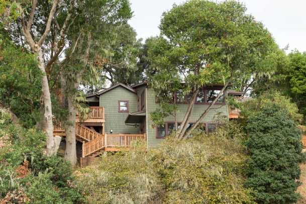 Nestled amongst coast live oak and Californian bay laurels, the cabin is perched on a steep hillside above Tomales Bay.