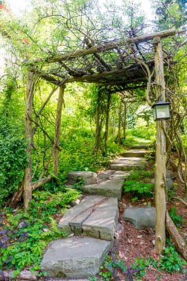 Rustic pergolas support native wisteria over a garden walkway.