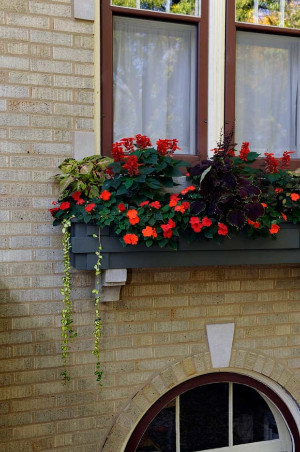 Window boxes in the windy city design for the arts for Craftsman style window boxes
