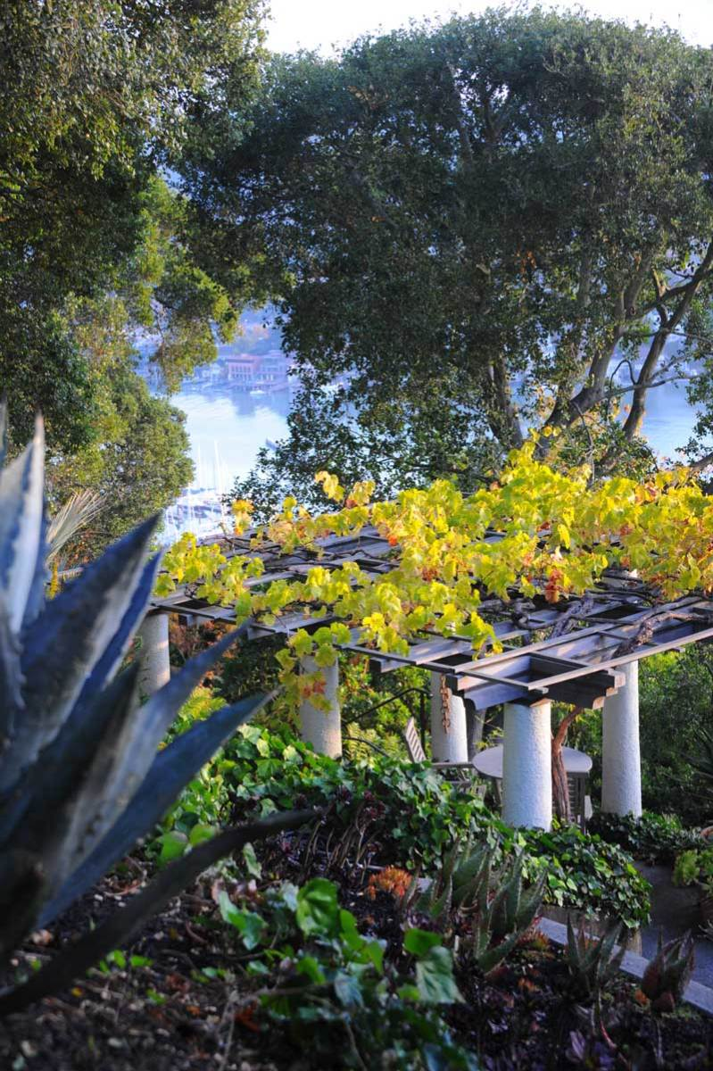 The view cascades down to the grape arbor, restored on a mid-level terrace, and to the bay below.