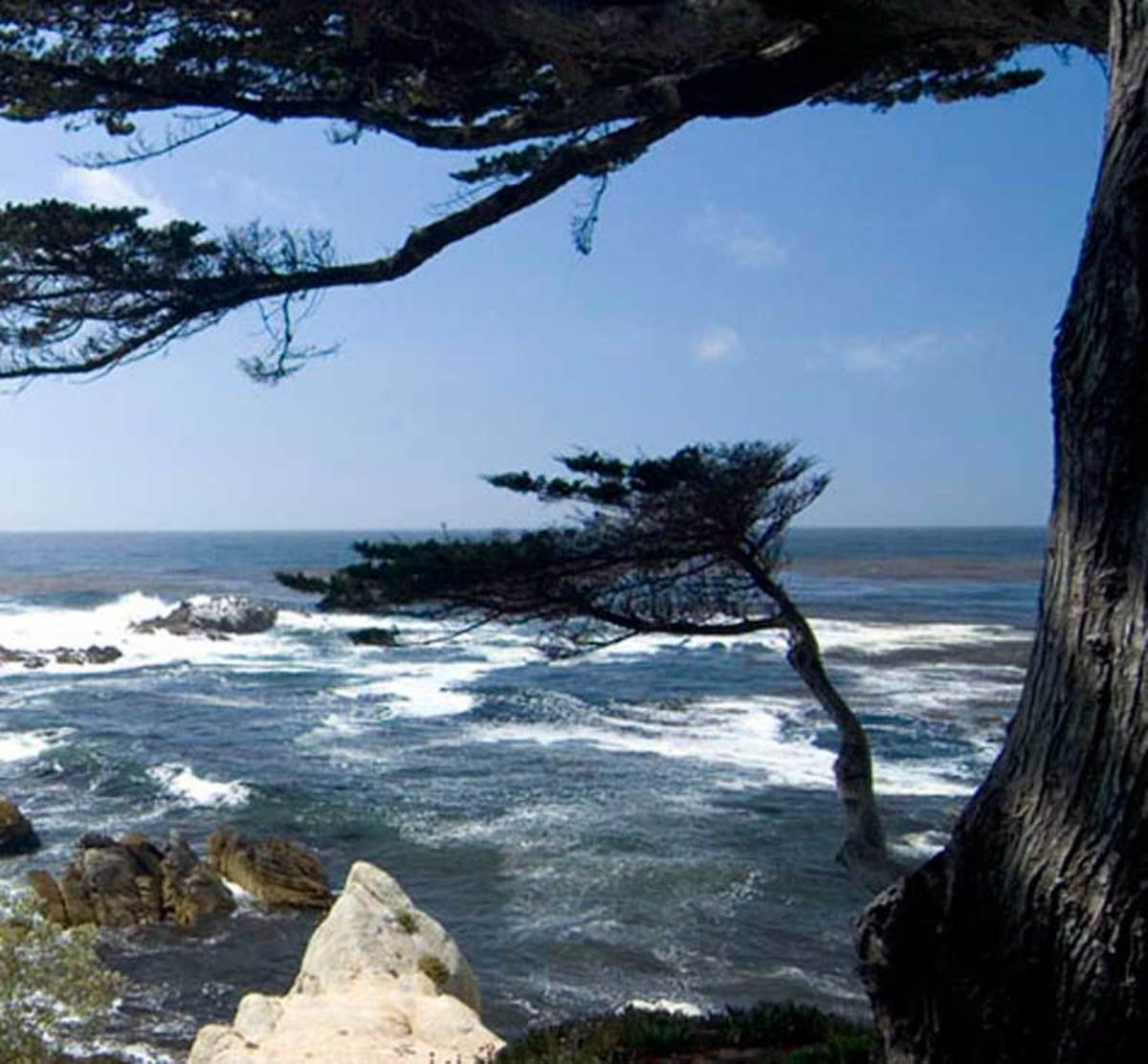 The Lone Cypress at Pebble Beach. (Photo: Douglas Keister)