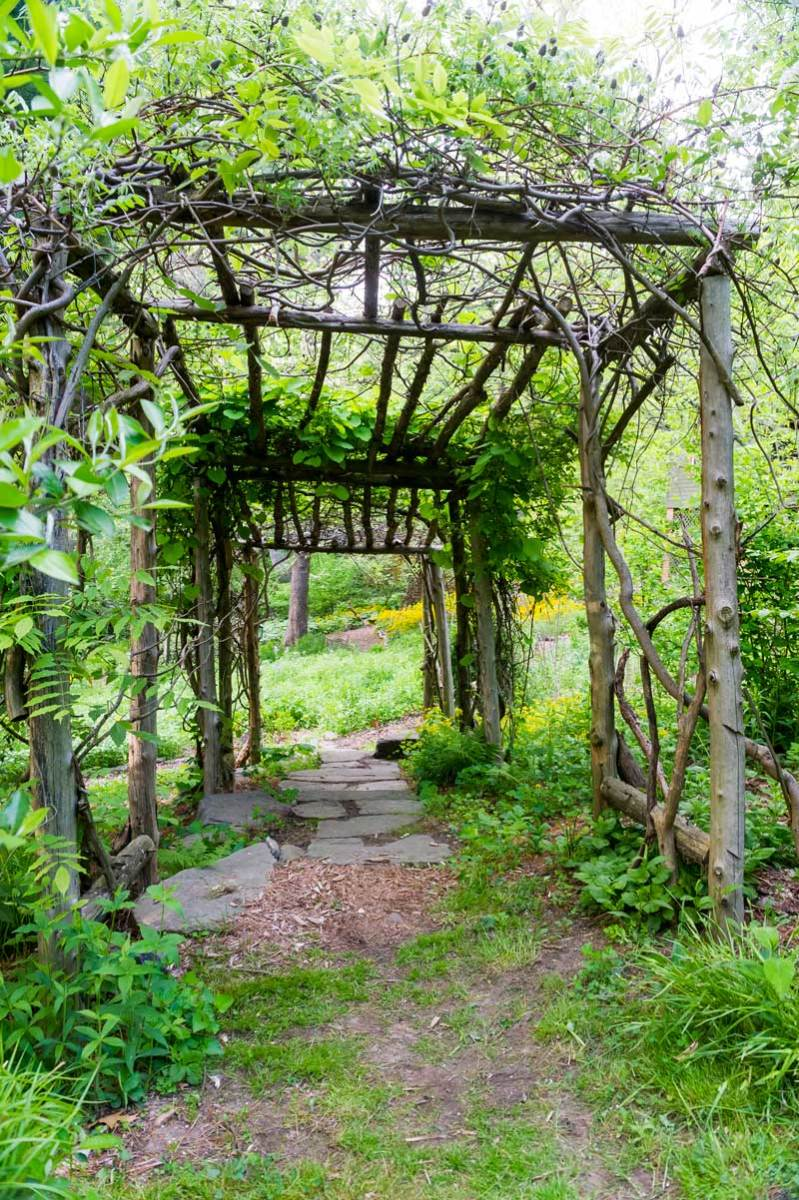 A rustic pergola is one element of a naturalistic garden in Hastings, New York.