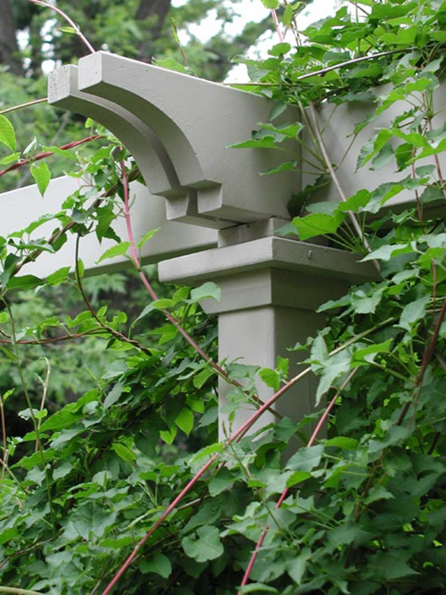 fancy-cut rafter end on a pergola–fence