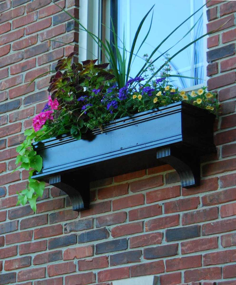 Flower Window Boxes offers this self-watering box.